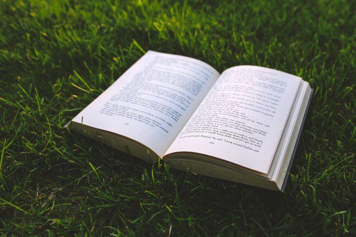 Open book in grass.